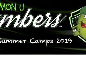 Kew CC Summer Camps 2019